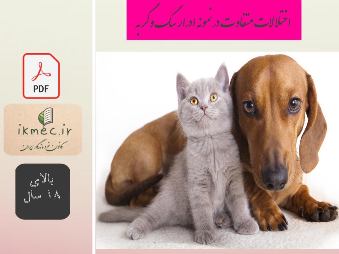 اختلالات متداول در نمونه ادرار سگ و گربه