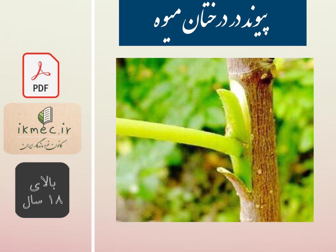 پیوند در درختان میوه